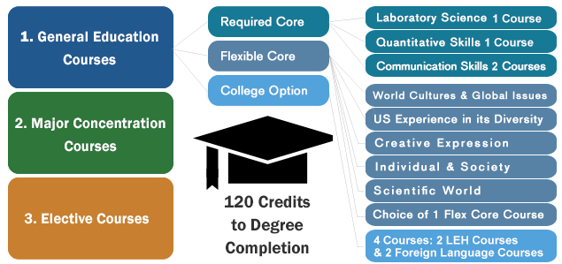 Online College Courses in USA