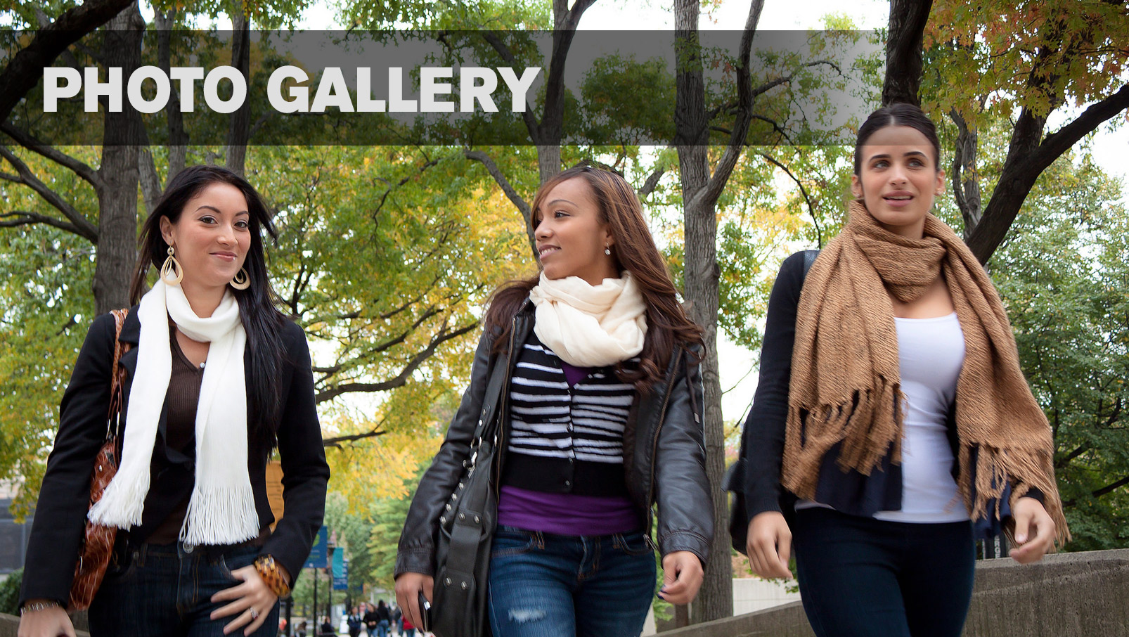 Lehman College Photo Gallery