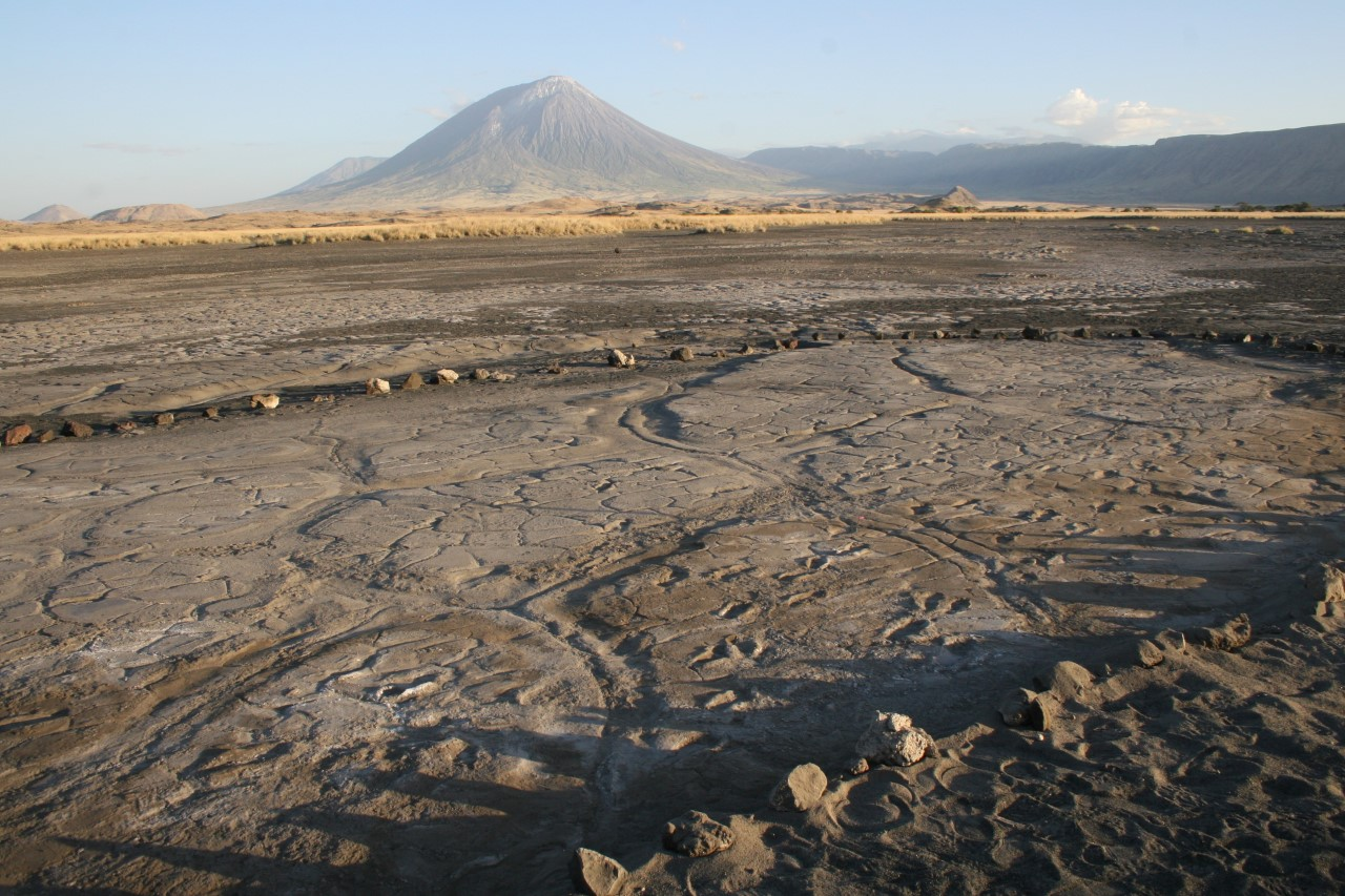 New Study of Ancient Footprint Site
