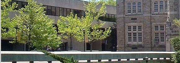 lehman college blackboard